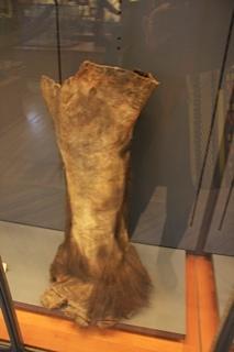 gallery mammoth